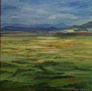Waikato Landscape 1